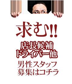 柏、松戸の高収入風俗アルバイトを探すなら【秘密倶楽部 凛 柏店】【男子求人はこちら!!】